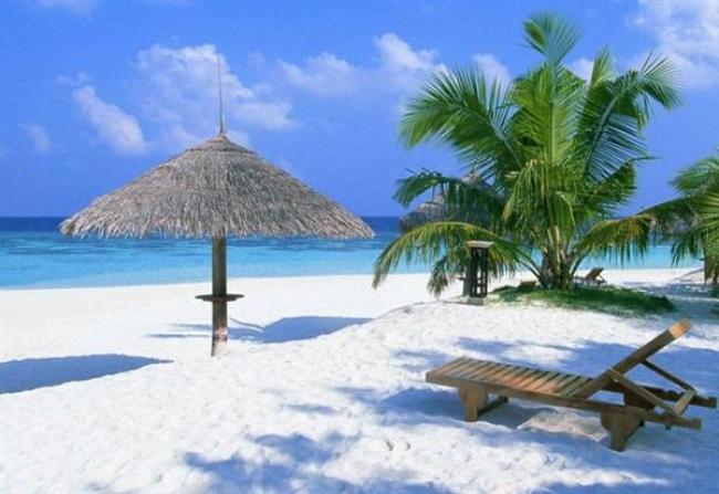 Viaje a Bahía Principe