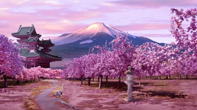 Tour a Japón en español - Japón infinito - 14 días - [Circuito]