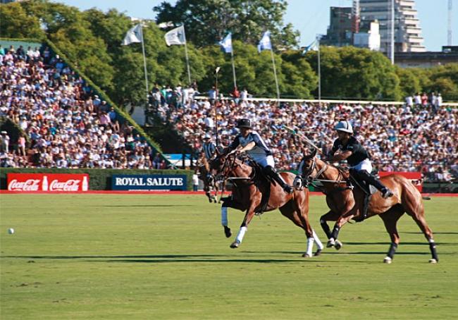 Paquete para ver Polo en Argentina todo el año