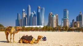 Paquete Egipto y Dubai en Oferta - Noviembre 2018 - [Grupal]