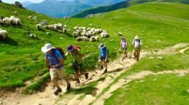 Viaje a pie al Camino de Santiago de Compostela desde Argentina