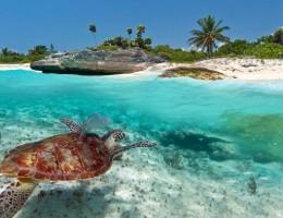 Paquete a Playa del Carmen en Junio