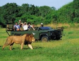 Paquete a Sudáfrica Septiembre - [Grupal]