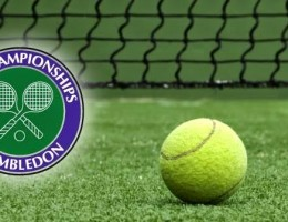 Paquete a Wimbledon 2019