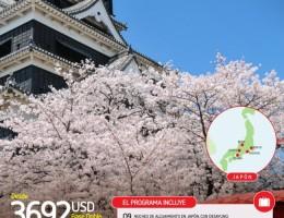 Paquete a Japon desde Argentina