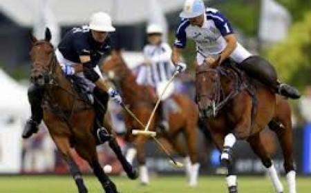 Tour Argentine Polo Season