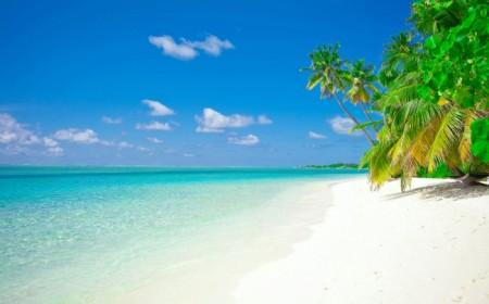 Punta Cana en Febrero