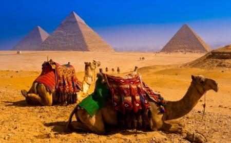 Salida grupal Egipto en febrer...