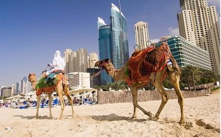 Viajes Dubai enero 2019
