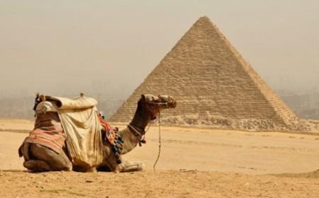 Paquete Dubai y Egipto con Cru...