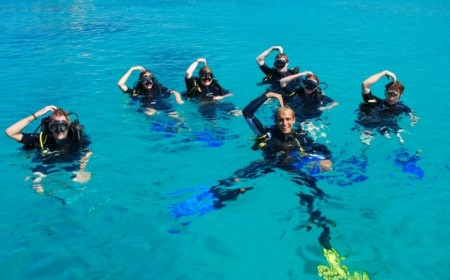 Viaje de buceo a Brasil Ecológ...